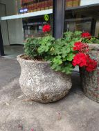 Ocean Rock Flared Cosmo Pond/Planter
