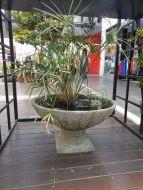 Ocean Rock Lily Bowl & Pedestal Set