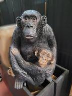 Female Gorilla and Baby