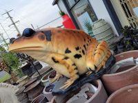 Large Frog- fiberglass lightweight
