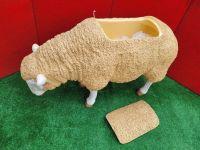 Sheep Esky - Fiberglass lightweigh